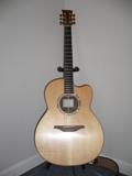 MciLroy Guitar (2005)